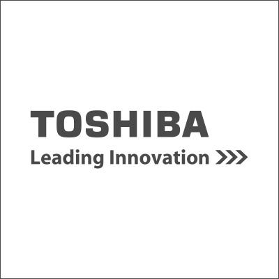 Pedro Gaspar - Toshiba